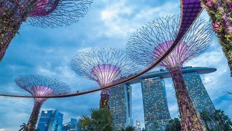 best schools singapore -