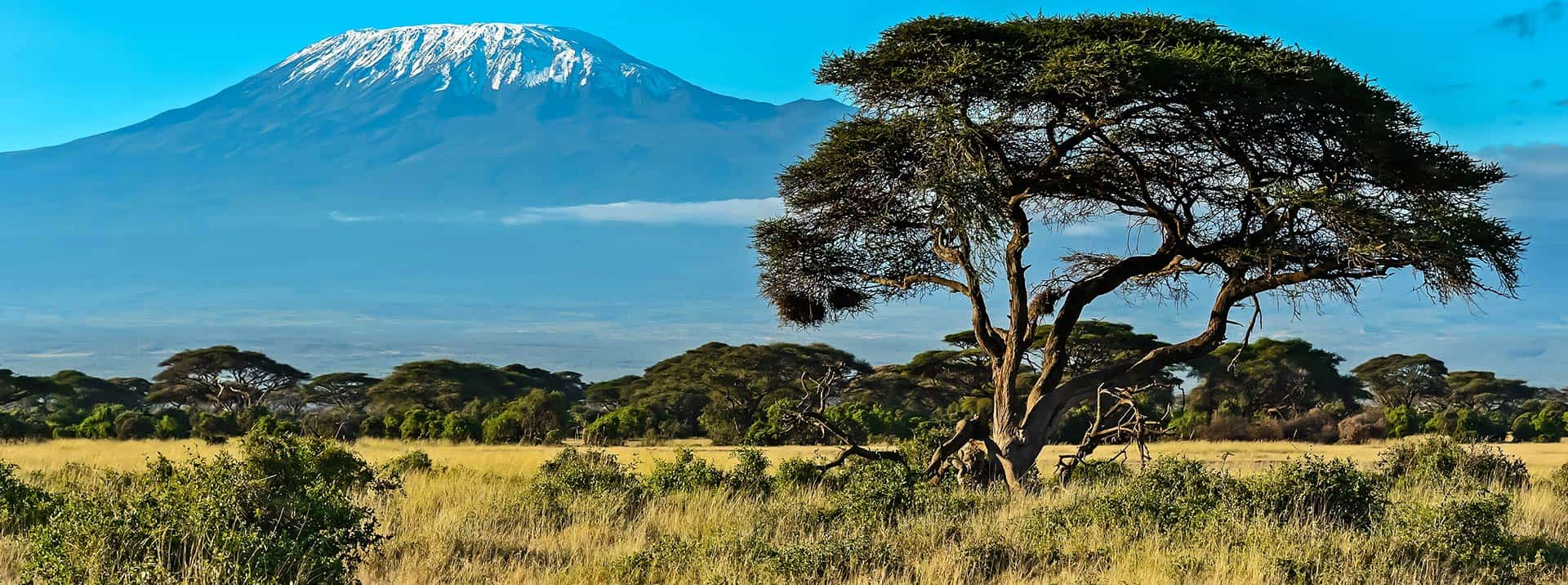 Featured-Image_Africa_1920x716