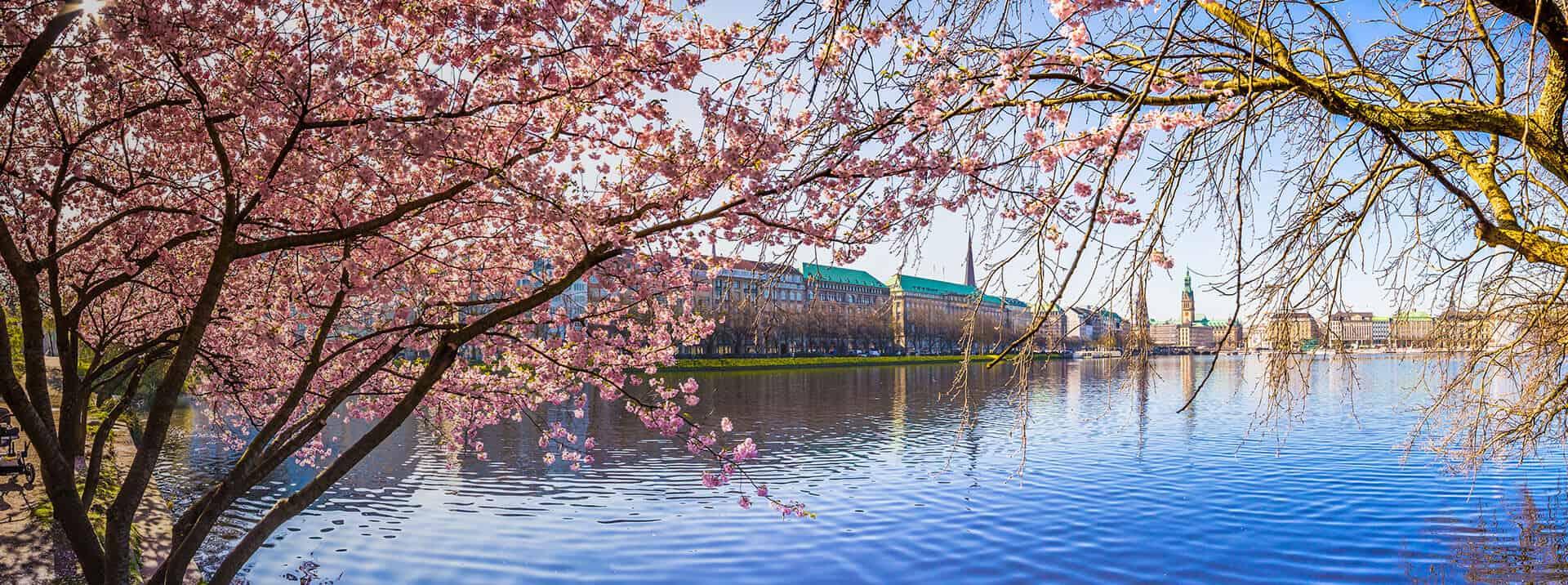 Featured-Image_Boarding_Hamburg3_1920x716