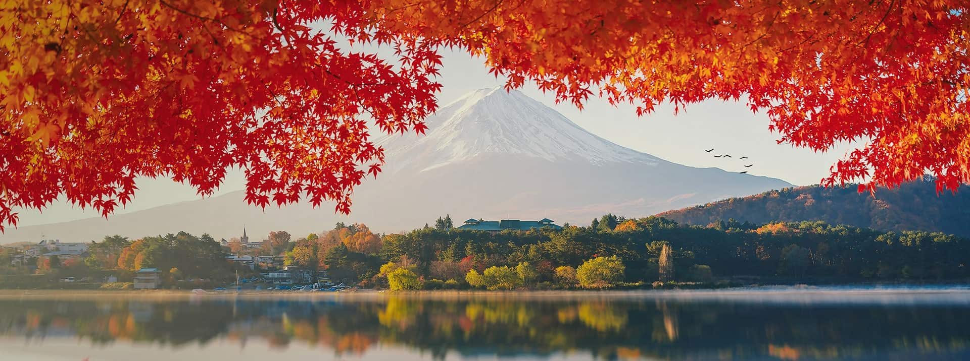 Featured-Image_JapanBoarding_1920x716-min
