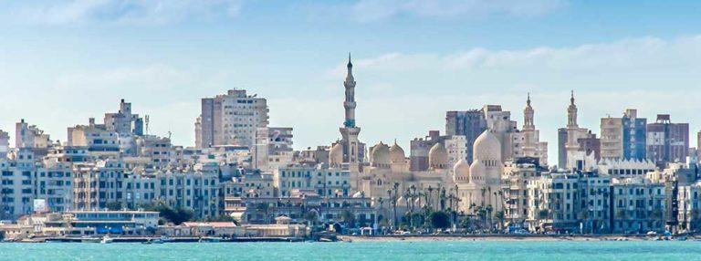 Best International Schools in Alexandria