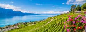 Swiss Boarding Schools Offer Plenty to Love.