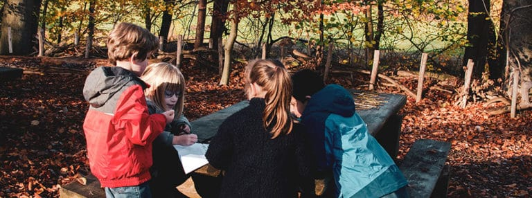 Forest Learning an der International School of Brussels: die Natur durch eine mathematische Linse betrachten