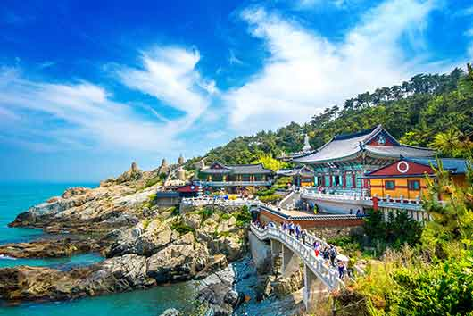 Boarding Schools South Korea