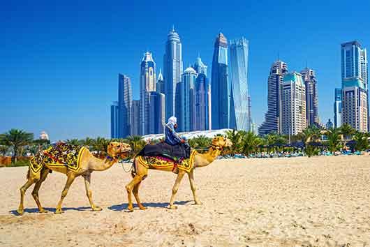 Najlepsze szkoły IB w Zjednoczonych Emiratach Arabskich