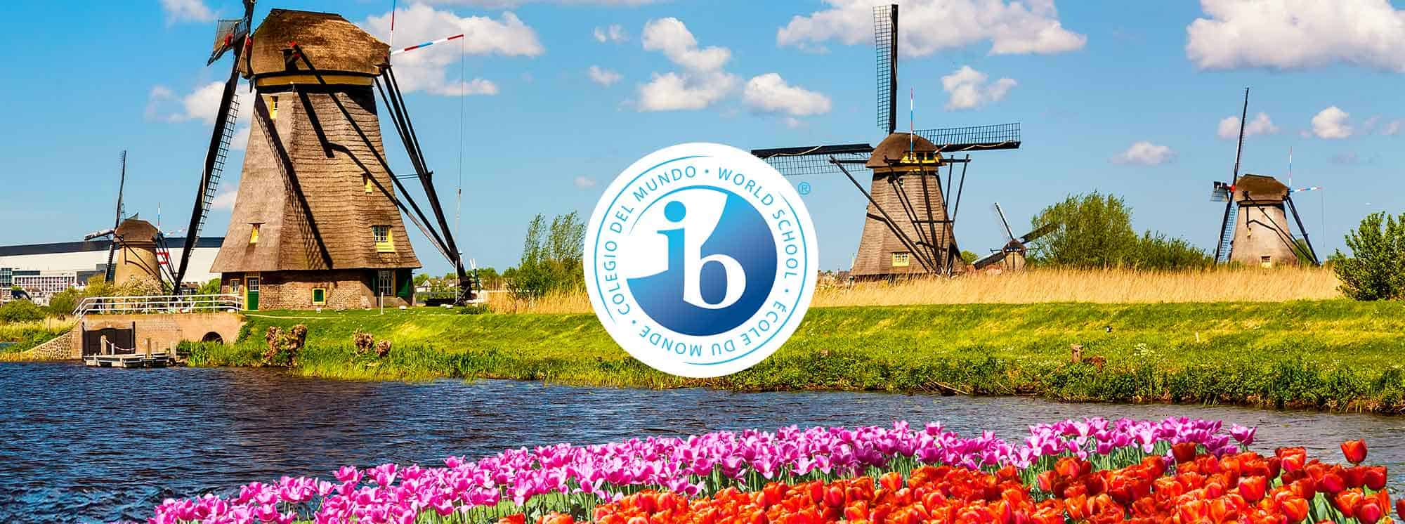 Top IB Schools in the Netherlands