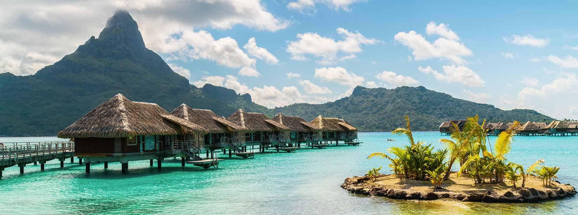 Top Schools in Polynesia
