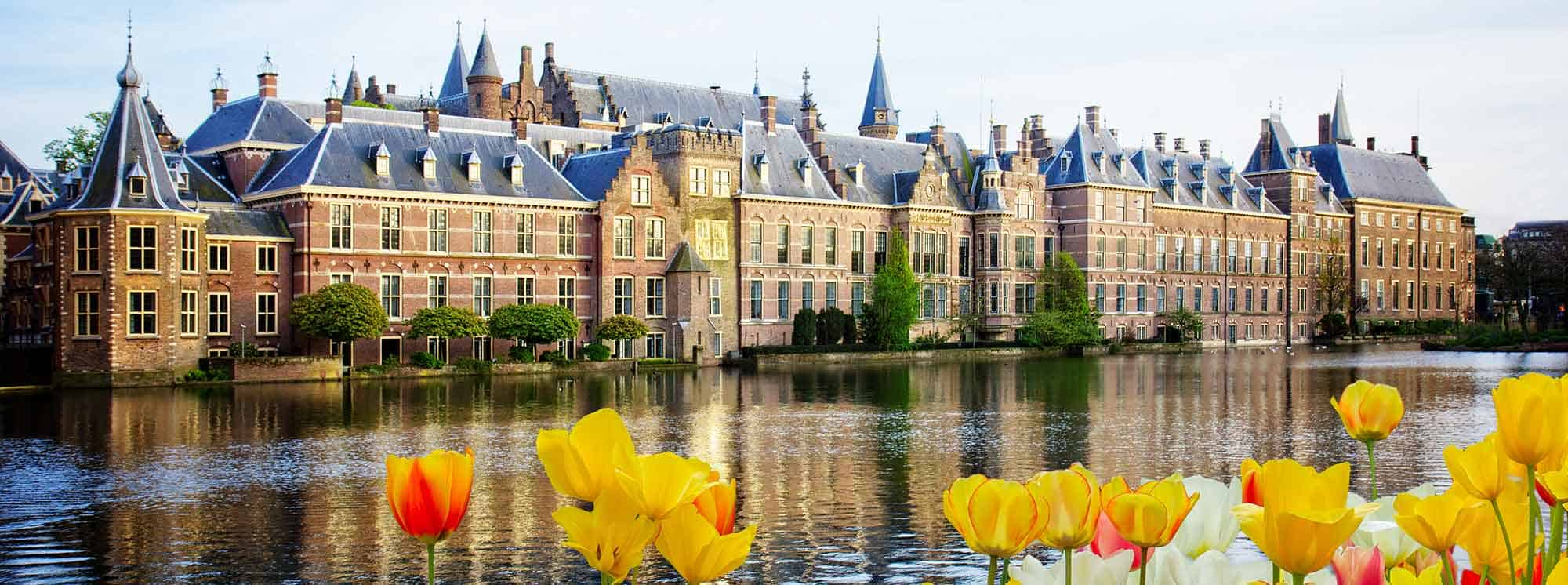 Top Schools in The Hague